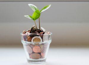 Geld aus Ratenkredit in Glas mit herauswachsender Pflanze