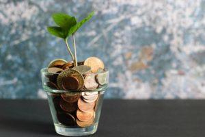 Pflanze wächst auf Münzen von Privatkredit